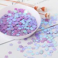 Iridescent Confetti Holographic Cherry Blossom Glitter Flakes Resin Art Supplies