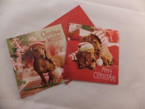 314: GC-55 CHRISTMAS DASCHUND SMALL CARDS PK 20