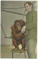 German Berlin Zoo Postcard of Orangutan Ape with His Keeper - 1930's............