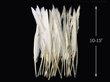 10 Pieces - Natural White Goose Pointers Long Primaries Wing Feathers Costume
