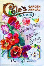 1895 Cole's Sweet Peas Vintage Flowers Seed Packet Advertisement Poster