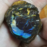 Impressive 40.15CT +VIDEO Australian WOOD FOSSIL OPALISED Boulder Opal ROUGH