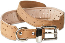 Woodland Dog Collar Leather for Dogs with 50-65 cm Neck Circumference in Tan