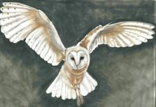 Large owl print Original owl painting Flying owl Gift Idea Bird picture