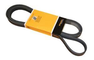 Contitech Products PK060900 Serpentine Belt