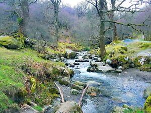 Pictures of Ireland, Derrybawn, Knockfin, County Wicklow, Ireland