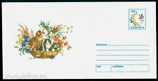 2000 Cats,kittens,Baby cats in basket,Katze,chats,Flowers,Romania,cover