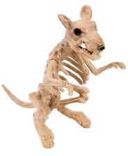 ZOMBIE RAT SKELETON HALLOWEEN PARTY DECORATION Horror Rodent Animal Prop 6324