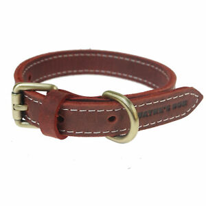 Genuine Leather Dog Collar for hunting, daily walking, training, 10-14inch, USA