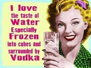 Funny Vodka Bar Sign Plaque Home Bar Pub Novelty Beer Alcohol man cave cocktail