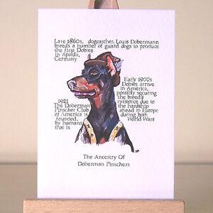 Doberman Pinscher History ACEO art card cartoon Dobie dog drawing