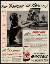 1945 Gaines Dog Meal - Cute Puppy Dog - Picture- Retro Original Vintage Ad