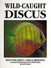 Wild-caught Discus by Bernd Degen (Hardback, 1995)