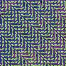 Animal Collective - Merriweather Post Pavilion (NEW CD)