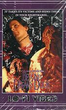 Beyond Dream's Door  VHS Lo-Fi Video Jay Woelfel Horror Gore