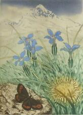 "David Koster signed limited edition etching & hand colouring ""Spring Gentians"""