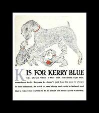 Kerry Blue Terrier - Vintage Dog Print - Clara Tice