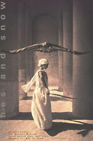 176446 GREGORY COLBERT Eagle with Dancer, Santa Monica LAMINATED POSTER DE