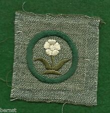 GIRL SCOUT BADGE -  FULL SQUARE GRAY GREEN - 1928-38 WILD FLOWER FINDER