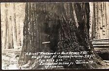Redwood Tree Bull Flat Creek KIEM Voice Of Redwoods Radio Rppc Postcard
