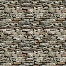 Dry Stone Wall #93-94 Naturescapes Stonehenge Quilt Fabric by the 1/2 yard