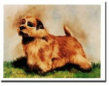 New Norfolk Terrier Pet Dog Profile Notecards 6 Note Cards By Ruth Maystead