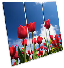 Tulip Flowers Sky Floral TREBLE CANVAS WALL ART Square Print Picture