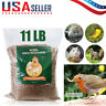 11 LBS Bulk Dried Mealworms for Wild Birds Food Blue Bird Chickens Hen Treats