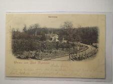Gruss aus Bad Pyrmont - Sennhütte - 1901 / AK