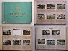 Aus Deutschlands Vogelwelt  Cigarettenbilder  Album  30er Jahre  Sammelbilder