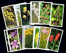 Britains Wild Flowers Full 30 Card Set 1986 John Player Trade Cards Plants