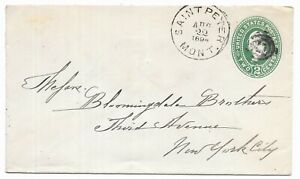 Saint Peter Montana to New York City 1894 Government Stamped Envelope Scott U311