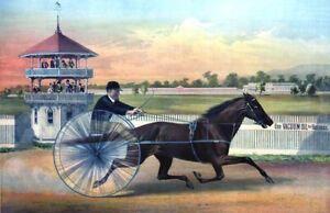 "1875 Horse Racing Lula, Rochester Driving Park Art Print 11"" x 17"" Reproduction"
