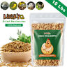 Dried Mealworms Bulk 10 LBS for chickens Birds Bluebirds Hamsters Hen Meal Worms
