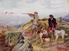 POINTER & ENGLISH SETTER DOG GREETINGS NOTE CARD MEN WITH GUNS GROUSE SHOOTING