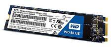 WD Blue M.2 1TB Internal SSD Solid State Drive - SATA 6Gb/s (wds100t1b0b)