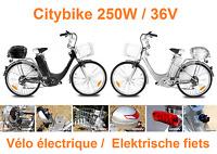 Vélo électrique - De elektrische fiets - Citybike VIRON 250W / 36V