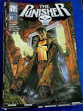 The Punisher  Marvel Knights Heft 1 und 2 Komplett