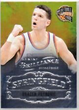 2012-13 Panini Brilliance Springfield #25 Drazen Petrovic - NJ Nets - NBA HOF