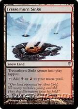 TRESSERHORN SINKS Coldsnap MTG Snow Land Unc