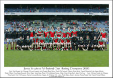 James Stephens All-Ireland Club Hurling Champions 2005: GAA Print