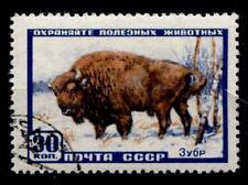 Wisent. 1W. Gest. UdSSR 1957