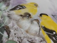 """Nature's Poetry """"LYRICAL BEGINNINGS"""" plate by Lena Liu W.S. George MINT with COA"""
