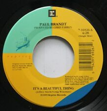 Country Nm! 45 Paul Brandt - It'S A Beautiful Thing / Add 'Em All Up On Reprise