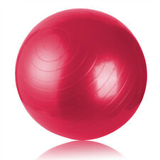 US!Gym Strength Exercise Ball Yoga Fitness Balance Training Anti-Burst Pump Ball