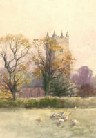 Early 20th Century Watercolour - Church View with Ducks