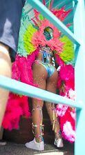 Rihanna carnival 11x8 photo #9