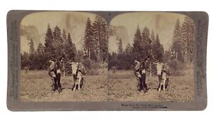 Vintage 1900 When Shall We Three Meet Again Donkey Underwood Stereograph 3D M271