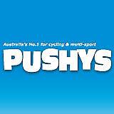 Thule 100105 Ridealong Mini Bicycle Child Seat Zinnia