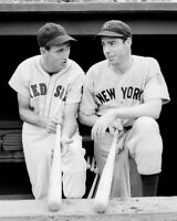 New York Yankees JOE DIMAGGIO & Boston Red Sox TED WILLIAMS Glossy 8x10 Photo
